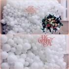 Фотозона из шаров №17