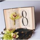 Нумерация на стол №13