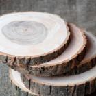 Аренда спилов деревянных